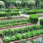 What are the Basic Structure and Functions of the Home Garden