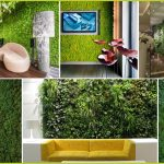 How to grow a Vertical Garden?