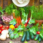 5 Vegetable Gardening Tips that will save your Money..!!