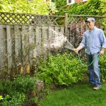 How to Protect Garden Plants this Summer?