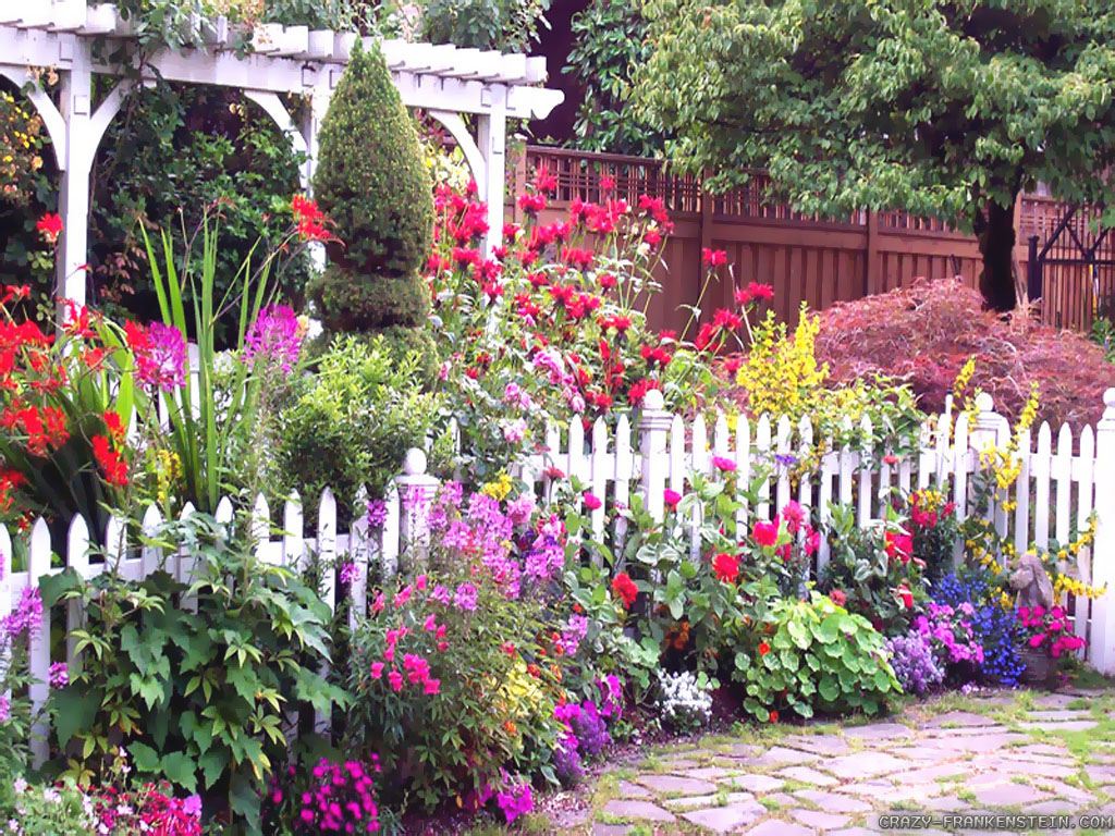 Best garden flowers for color all summer acegardener for Flower landscape
