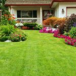 Tools needed for home lawn care