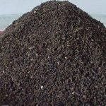 Advantages of Using Vermicompost