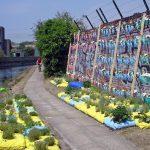 Smarter Tips for Urban Gardening
