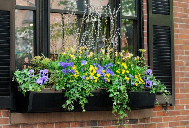 balcony tips