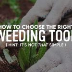 How to pick the right tool for weeding the garden?
